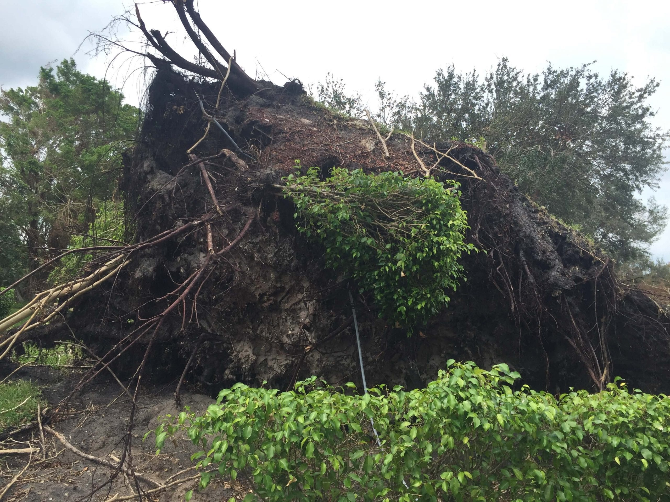 West Palm Beach, Florida Hurricane Preparedness