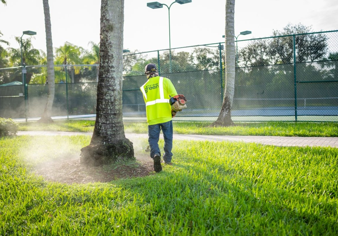 Lawn Mowing Services for Delray Beach, FL