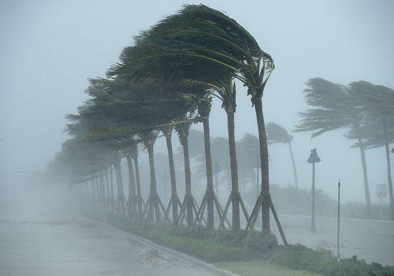 West Palm Beach, FL Hurricane Preparedness Services